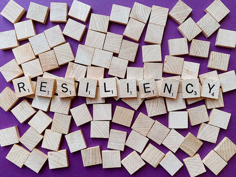 21-lezioni-per-il-XXI-secolo-resilienza