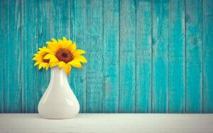 Cambiare-l-acqua-ai-fiori