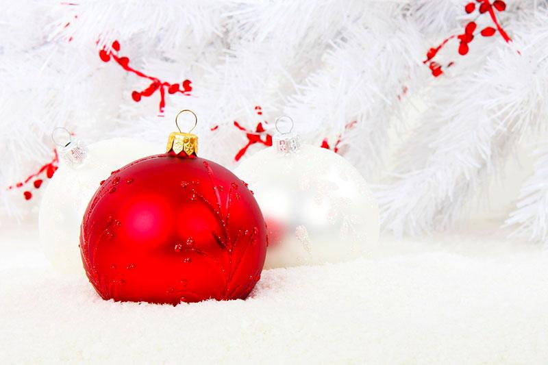 Regali-Natale-last-minute-regalo