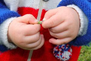Legge-di-bilancio-2021-breve-sintesi-bonus-figli