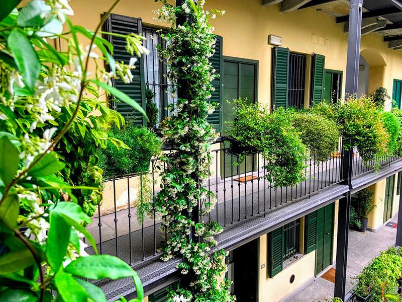 intervista-all-autrice-Antonella-Brugnola-home-sharing